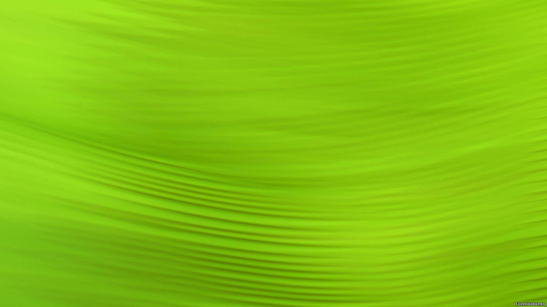 Обои зеленый фон для рабочего стола