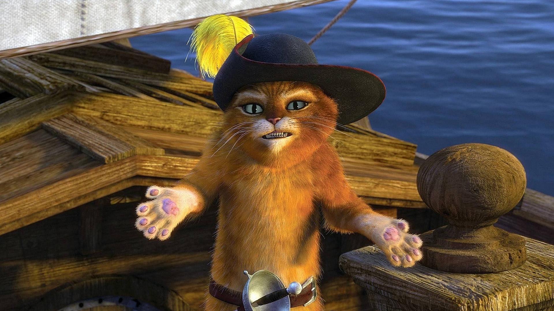 Обои кот на лодке в мультфильме кот в