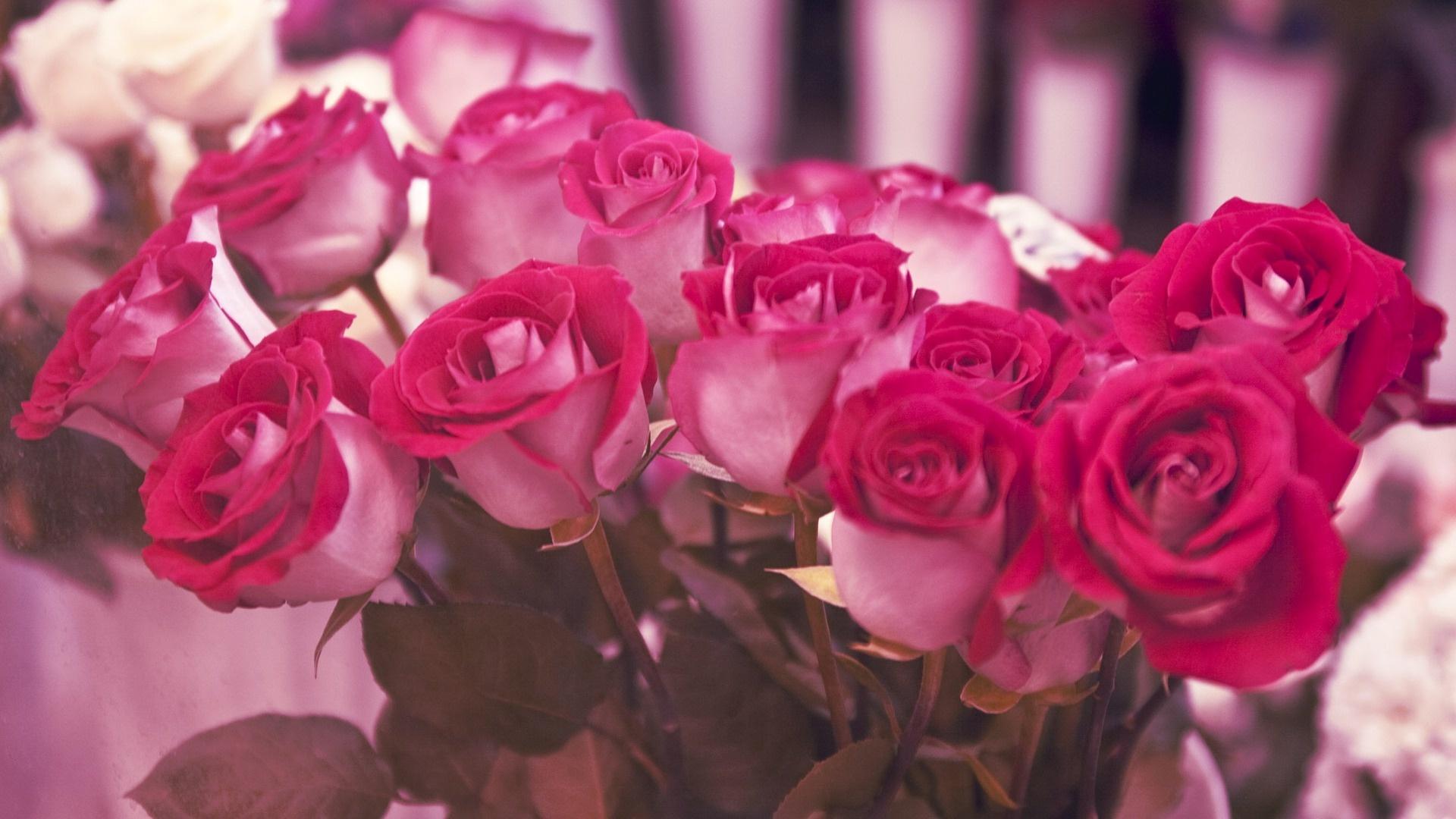 Широкоформатные обои букет розовых