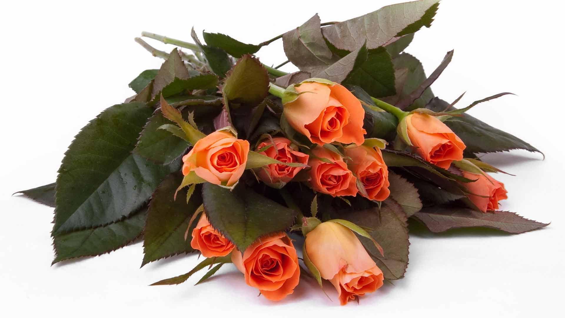 Открытка цветы для мужчин