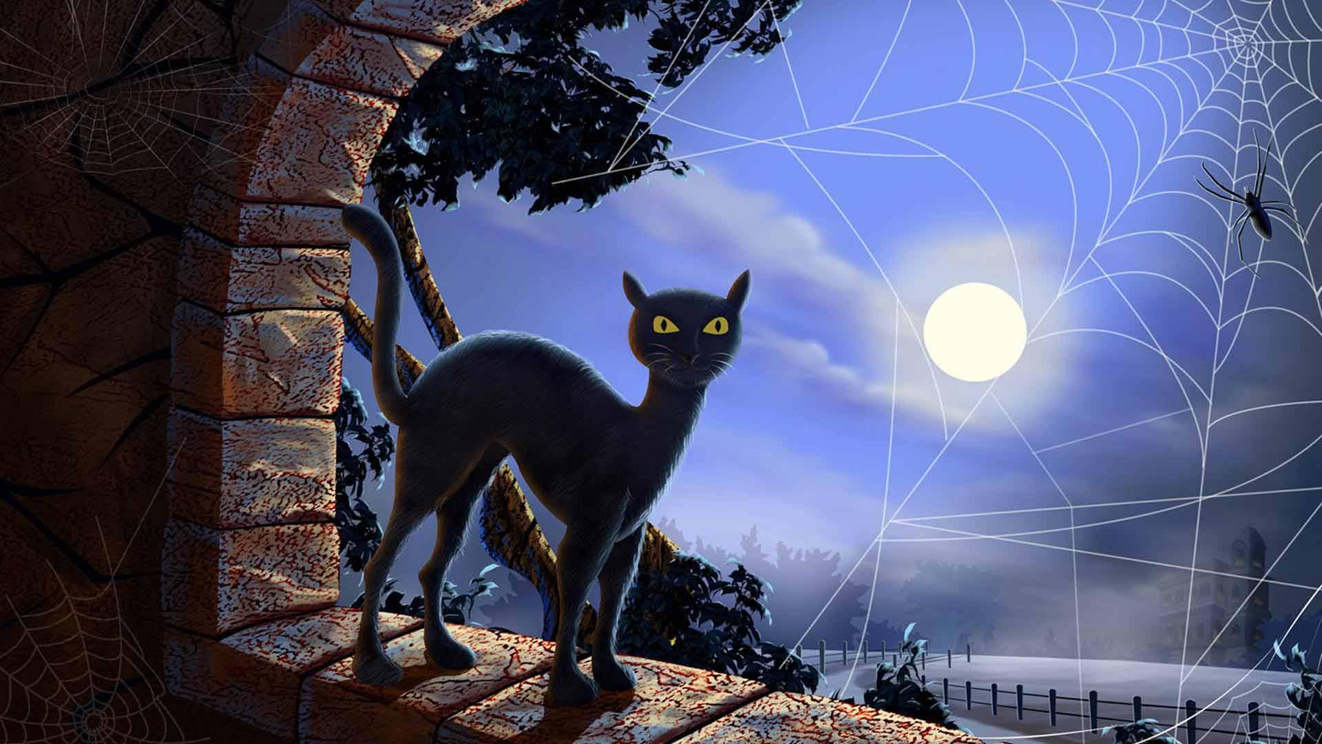 Ночь кот обои на рабочий стол