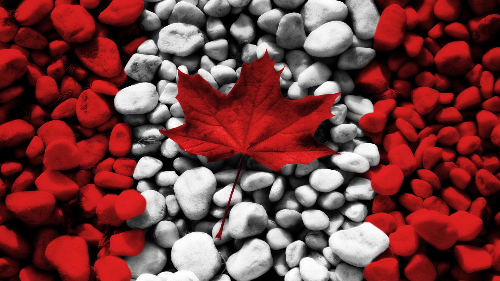 канадский флаг обои для рабочего стола № 506433 загрузить