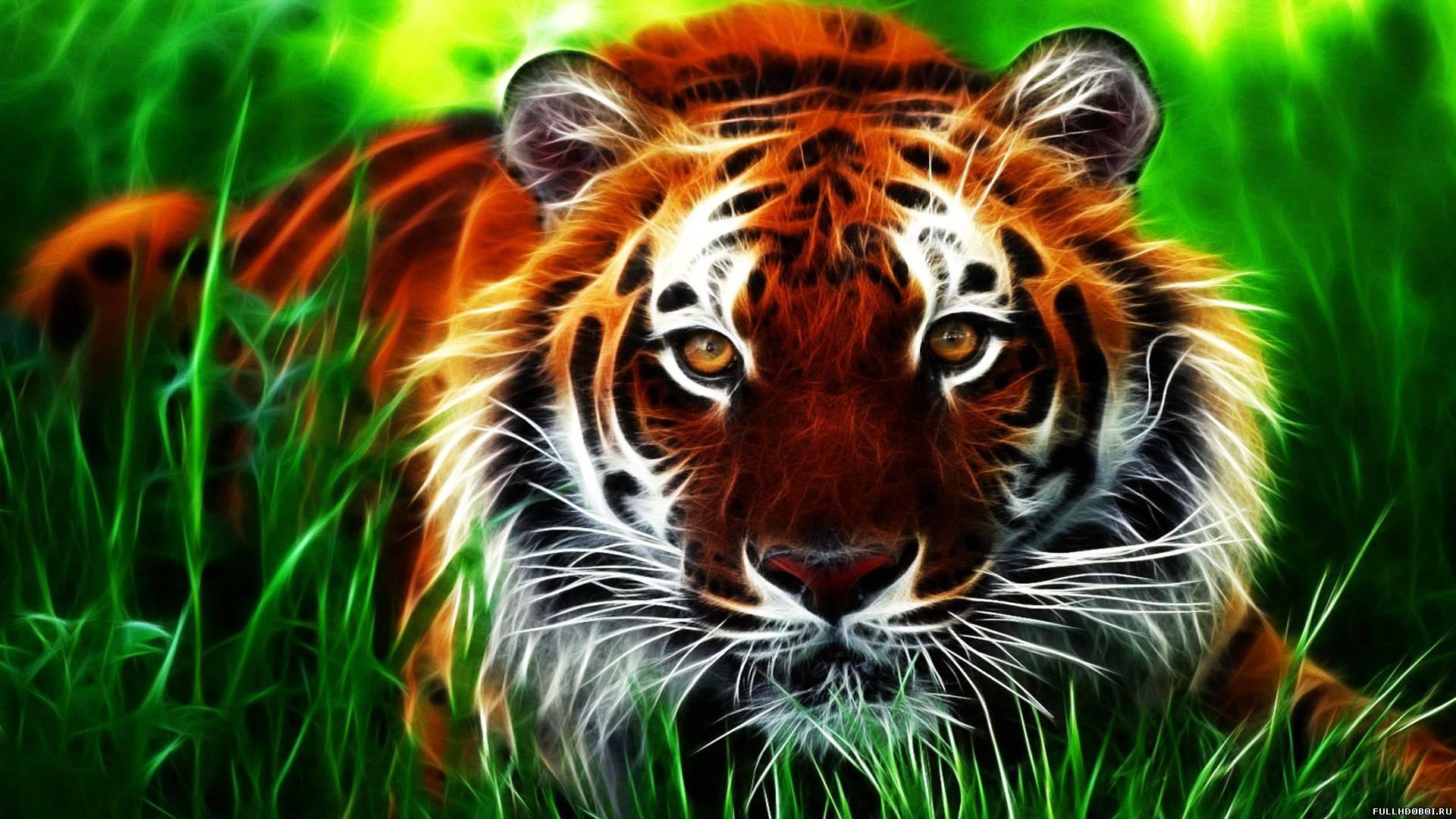 Обои Тигр / обои тигры, картинки - Обои ...: www.fullhdoboi.ru/photo/animals/tigr_oboi_tigry/3-0-3428