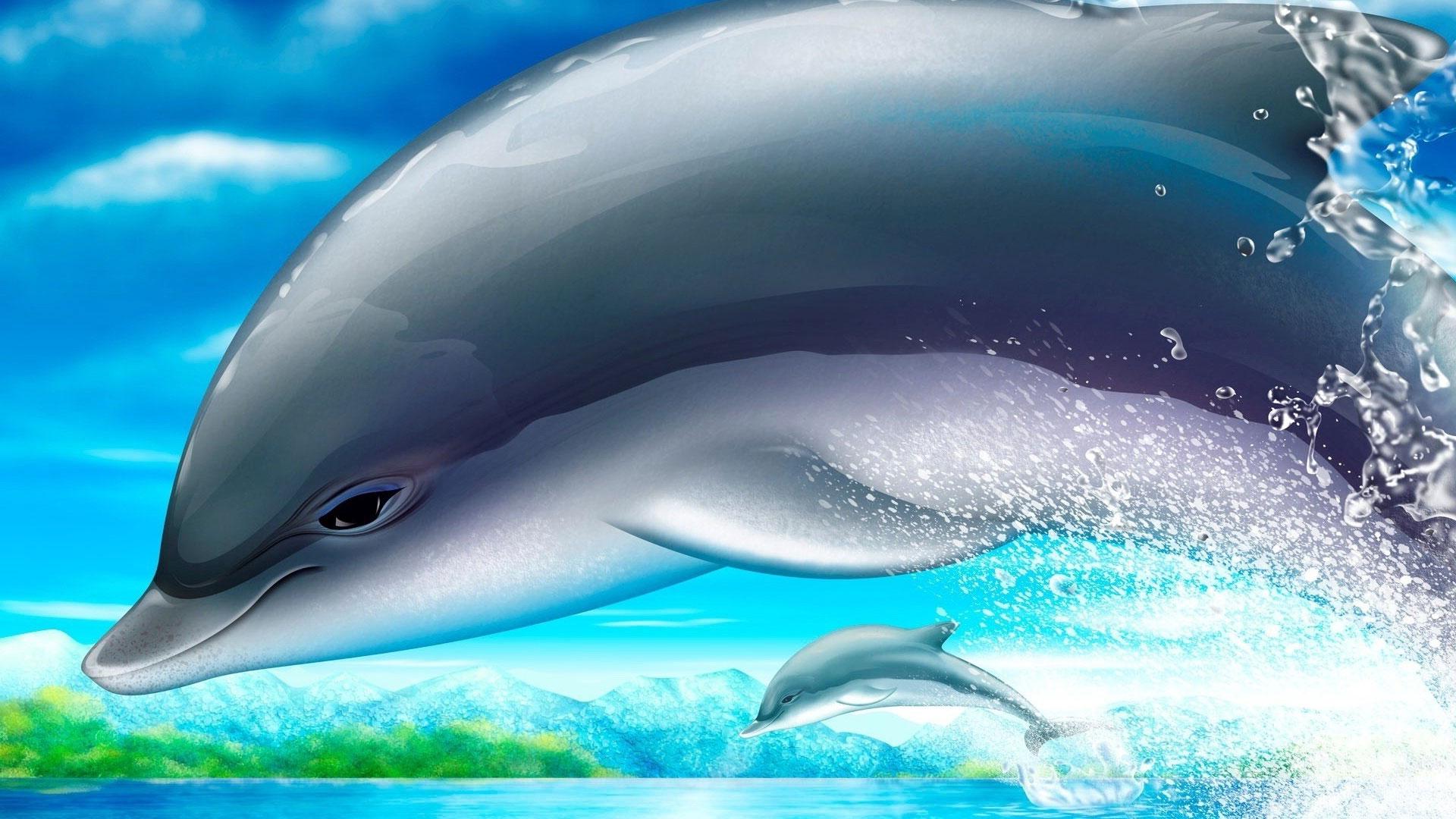 С дельфинами для рабочего стола