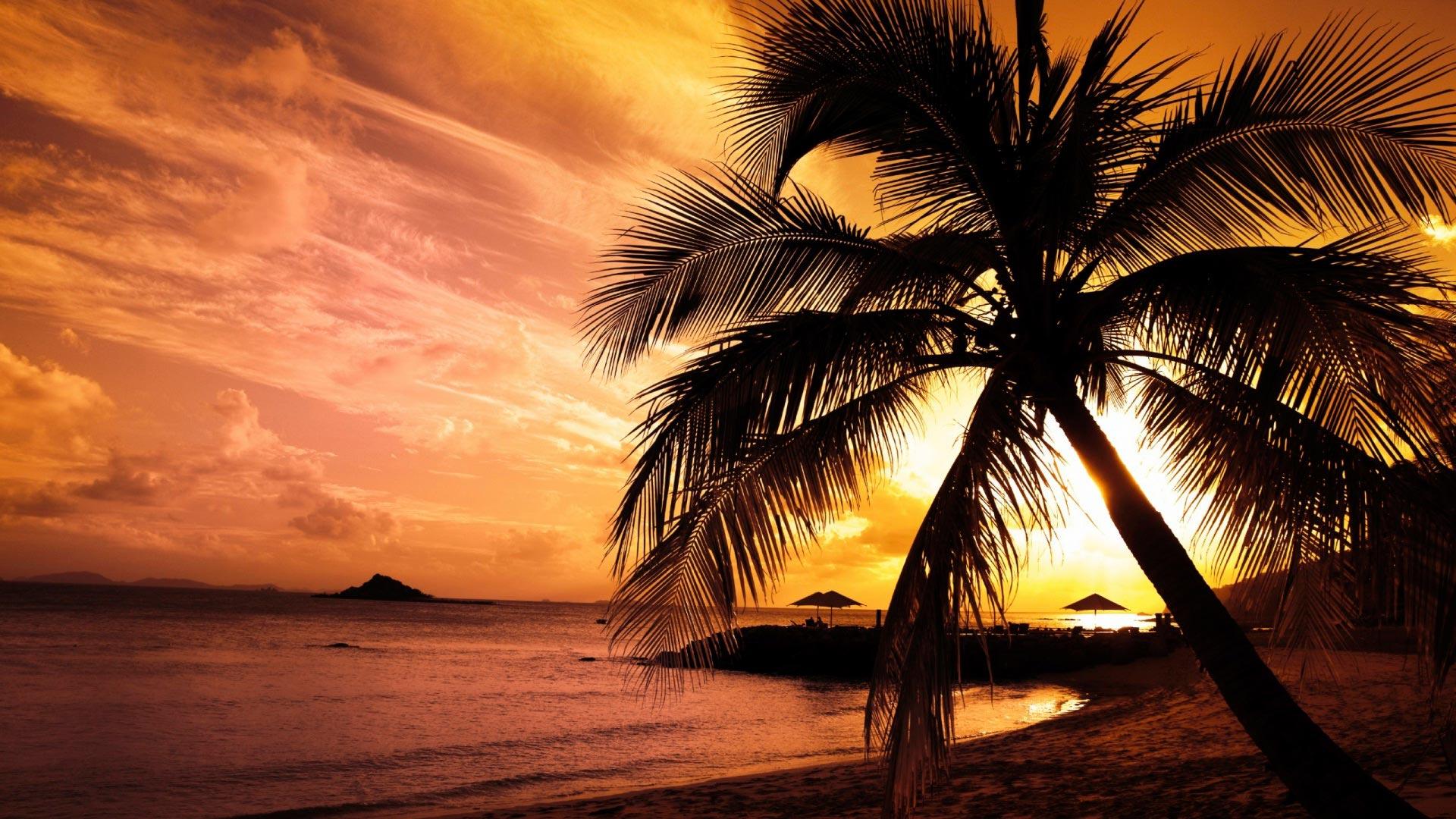 Смотреть порно kya tropik anal 11 фотография