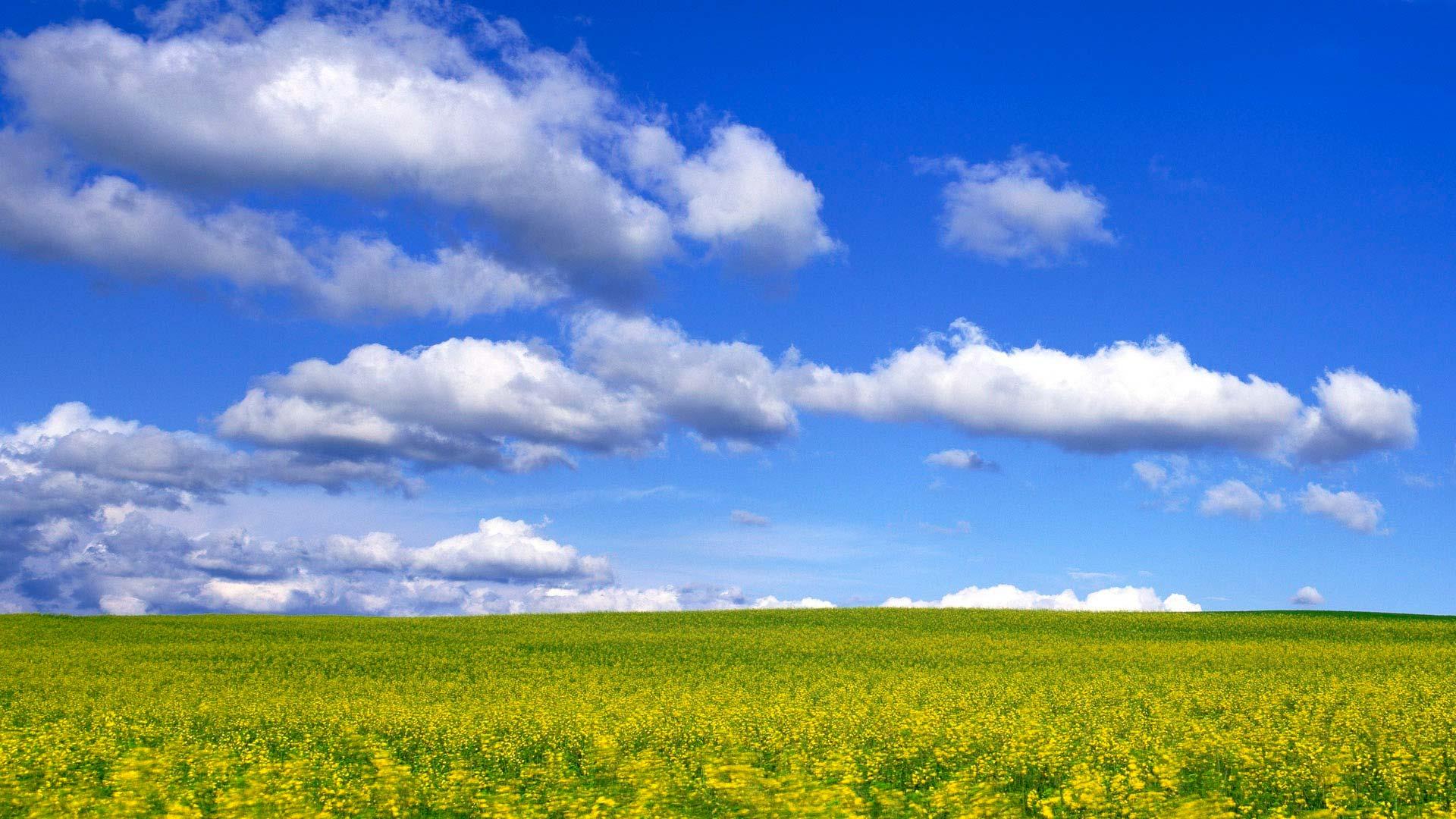 Облака и поле облака в небе над полем