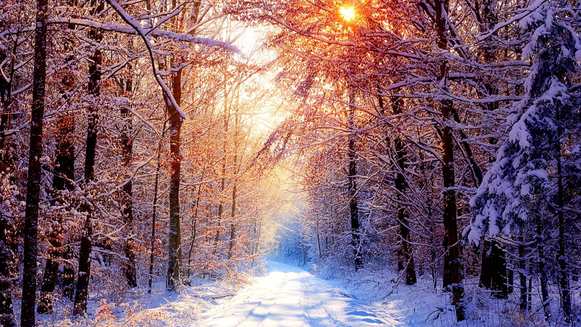 Гламурные картинки с зимой на рабочий стол