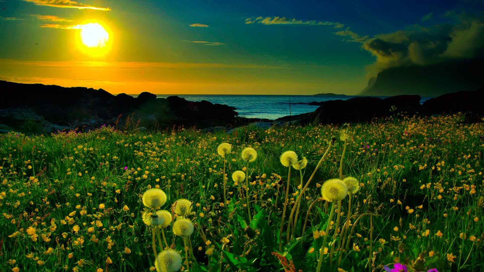 Фото морской пейзаж высокого разрешения