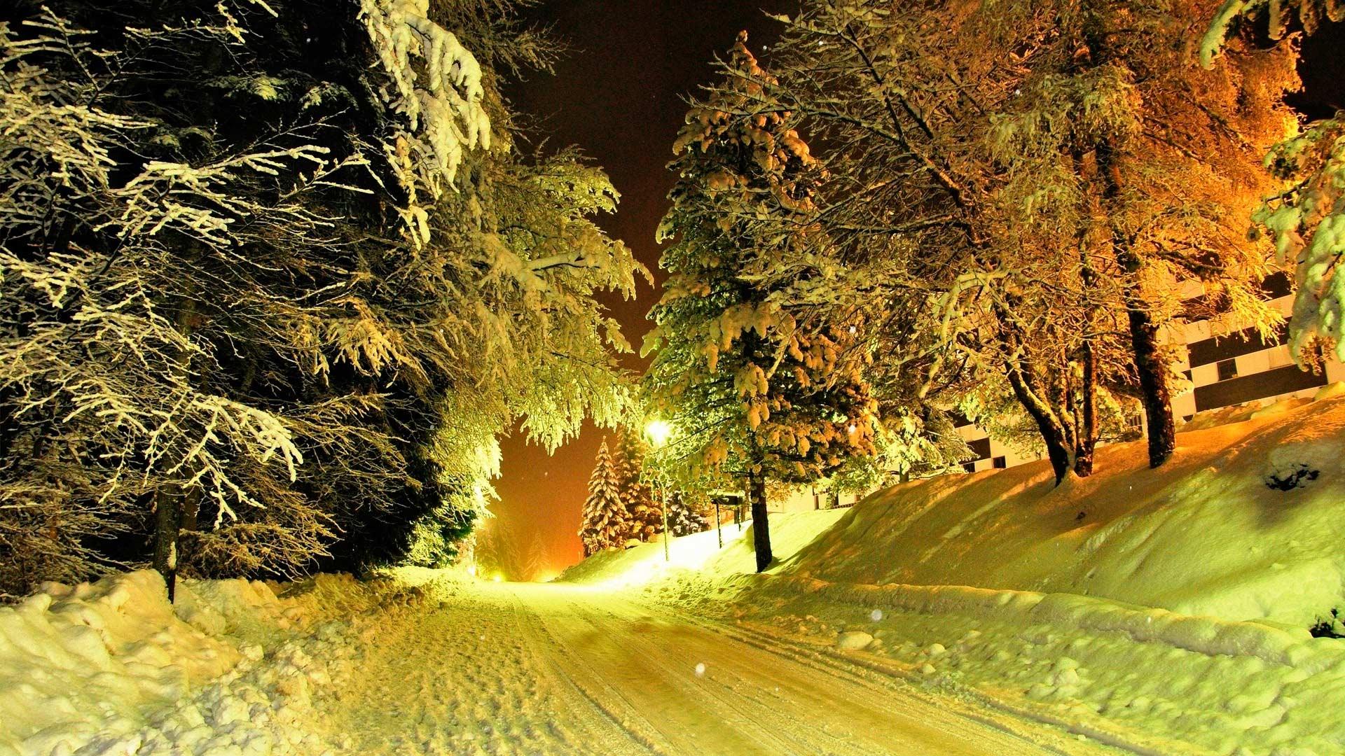 Широкоформатные обои ночная зима