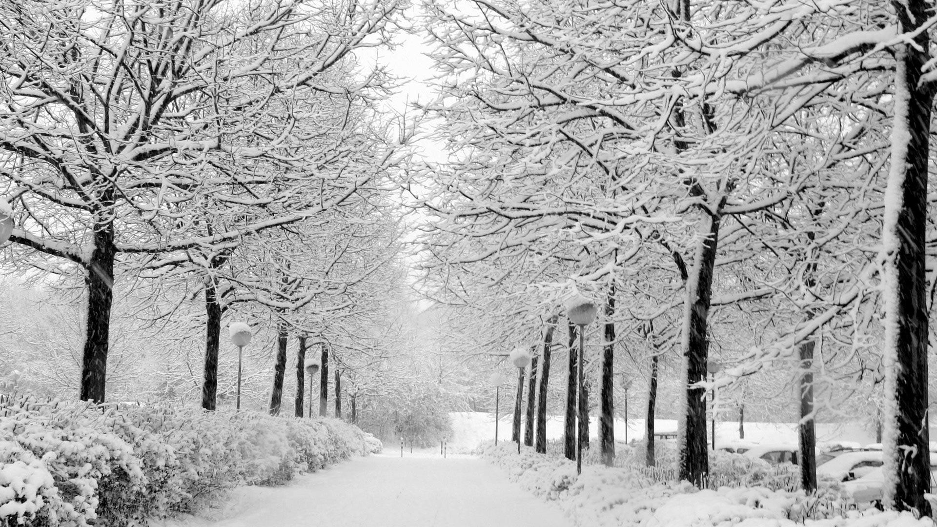 Широкоформатные обои зима зима