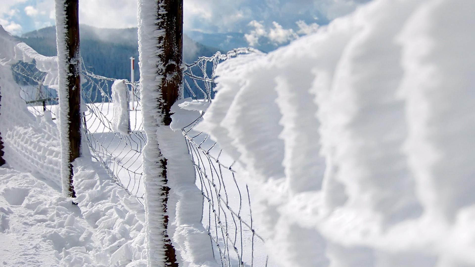 обои для рабочего стола первый снег природа 2751
