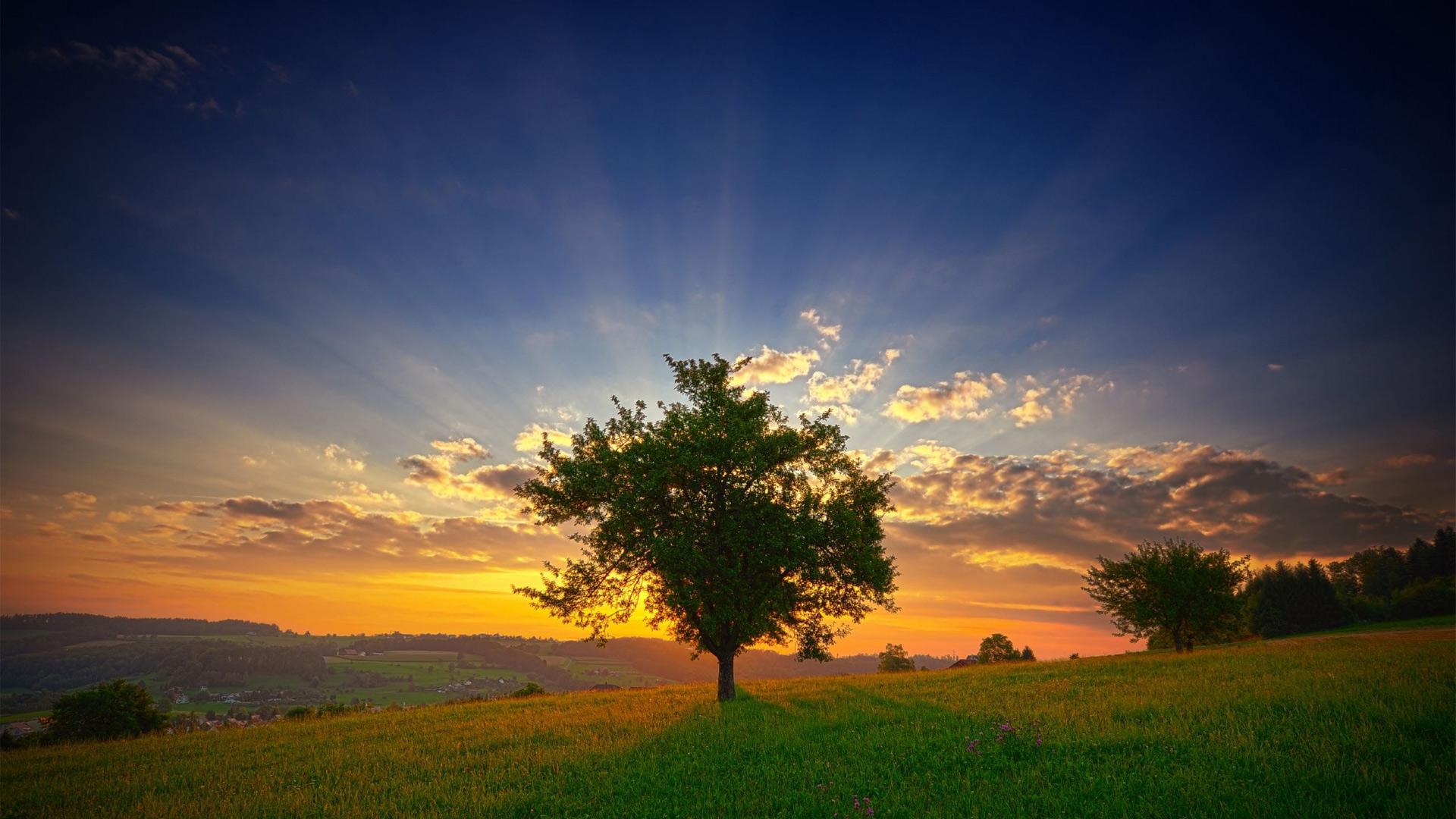 Рассвет в природе картинки
