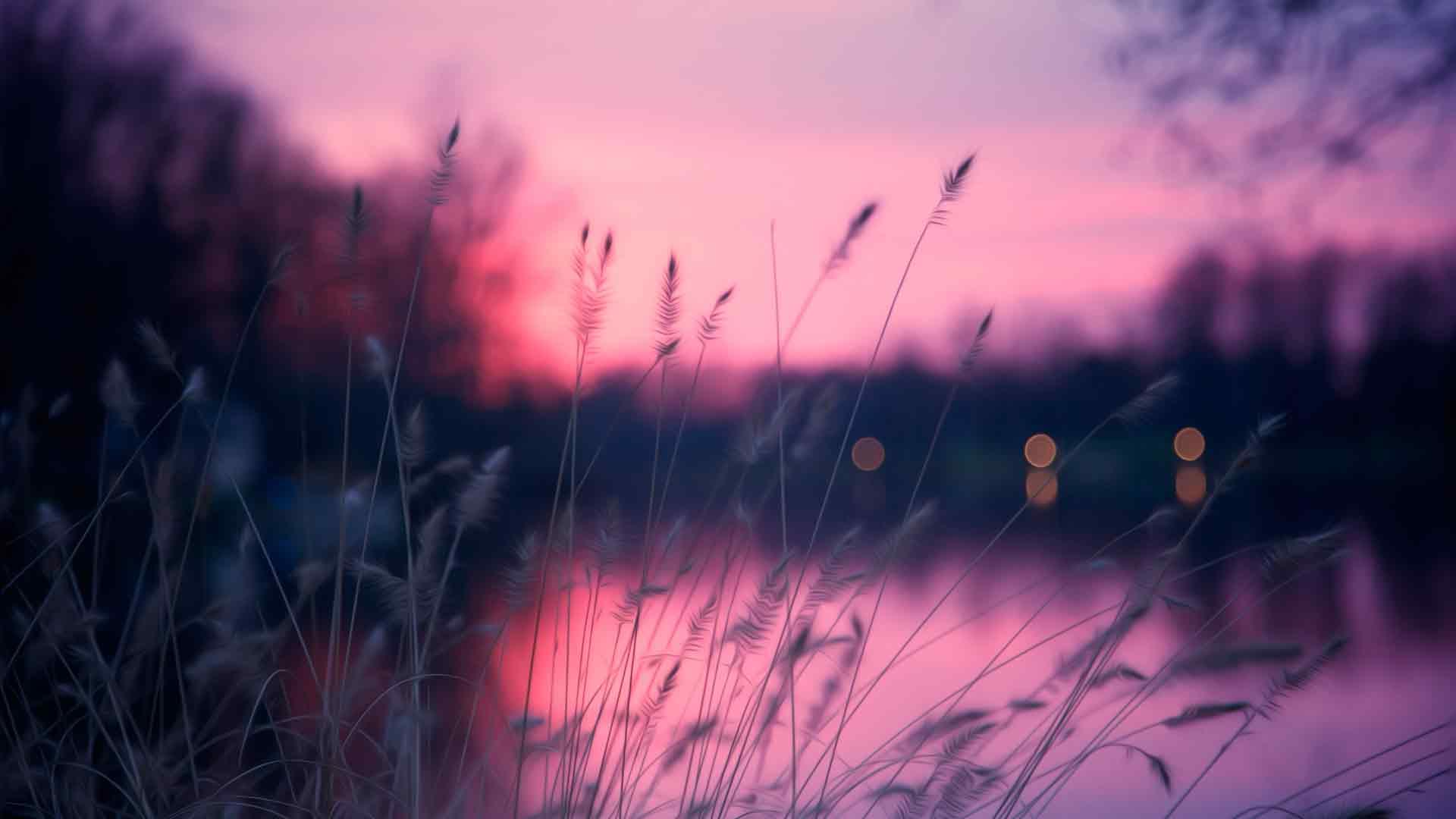 Закат солнца картинки