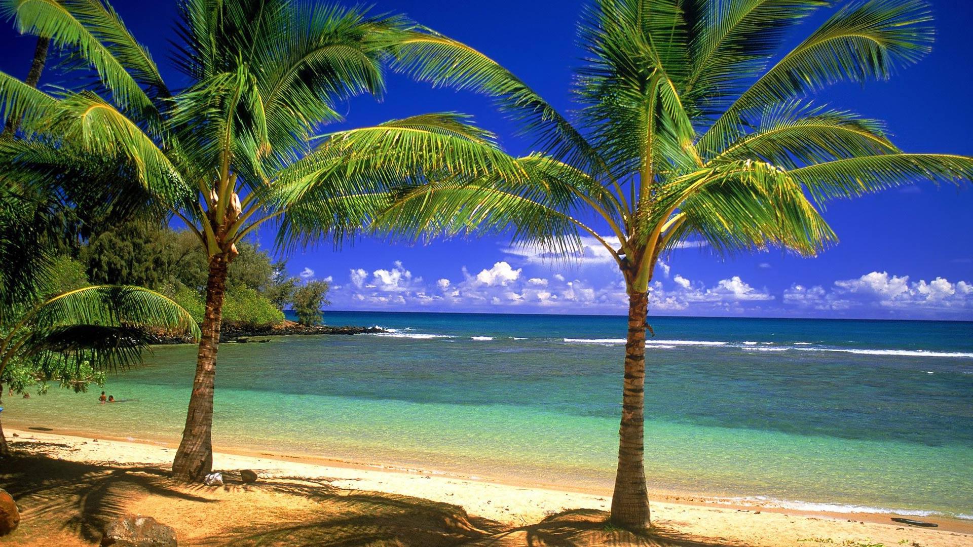 Дикий пляж 33 фото  ClassPicRU