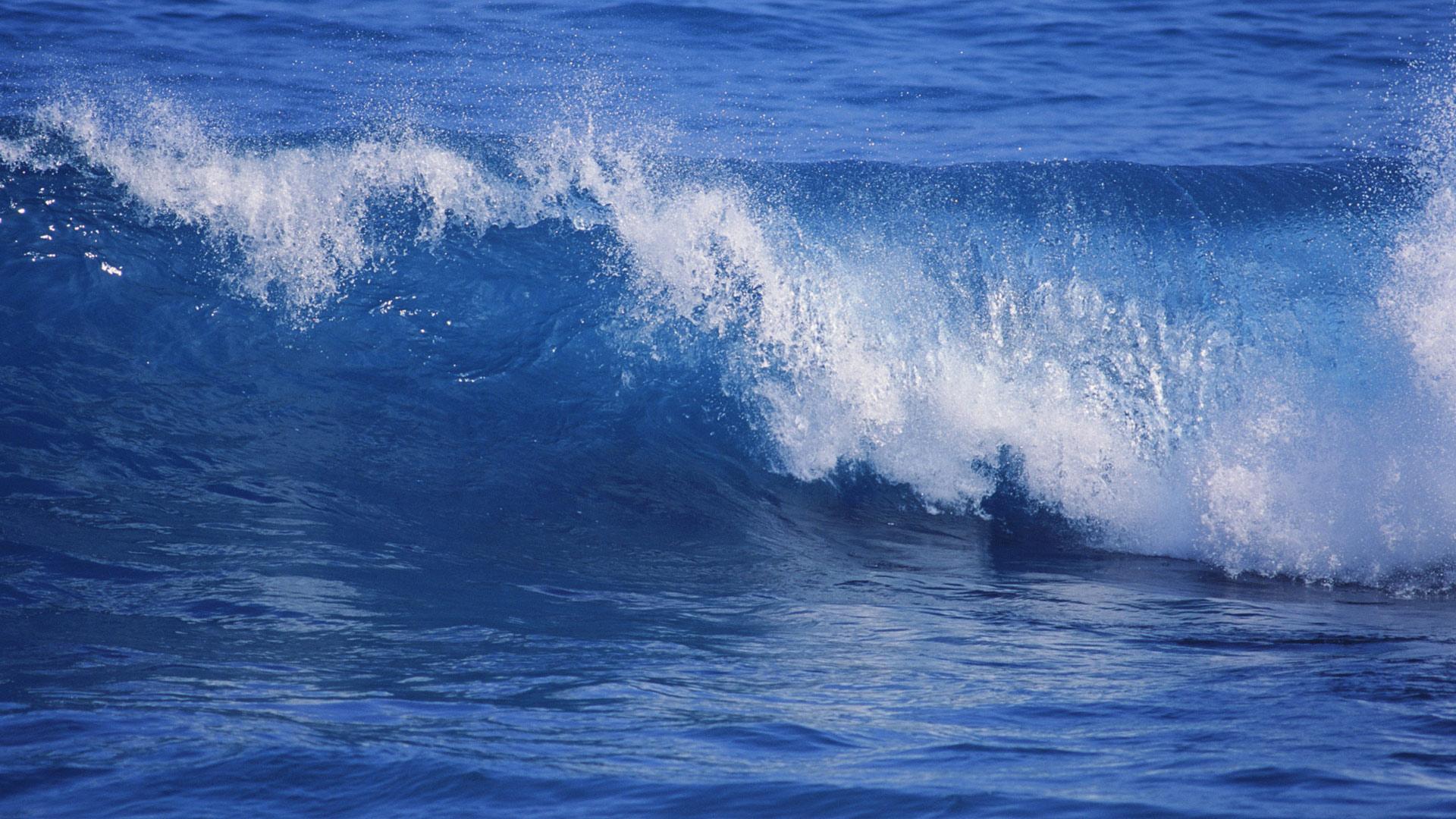 Морская природа картинки