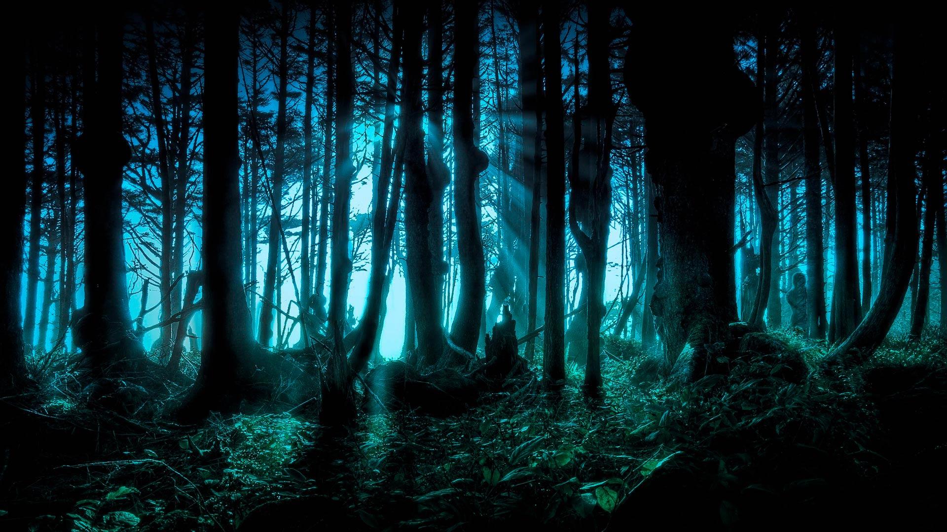 ... и картинки Страшный лес скачать здесь: www.fullhdoboi.ru/photo/nature/strashnyj_les/6-0-18385