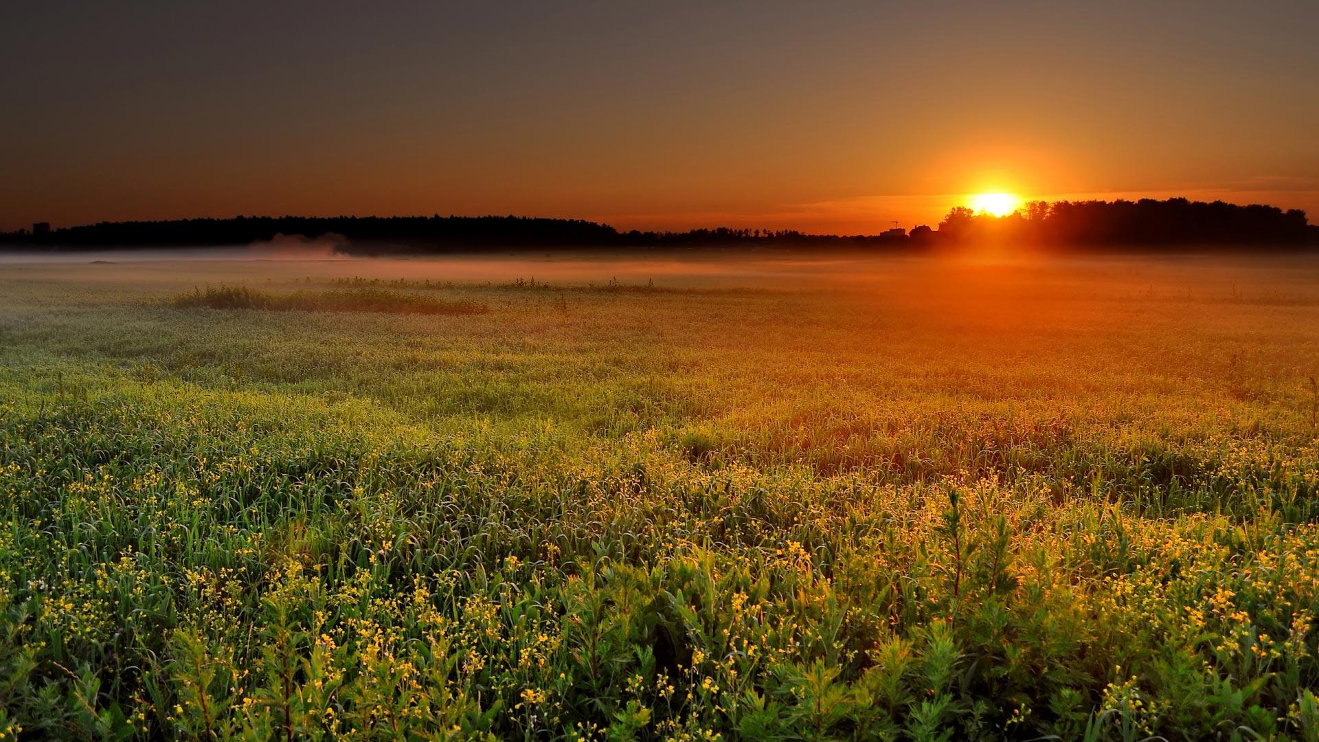 Картинки по запросу весенний закат