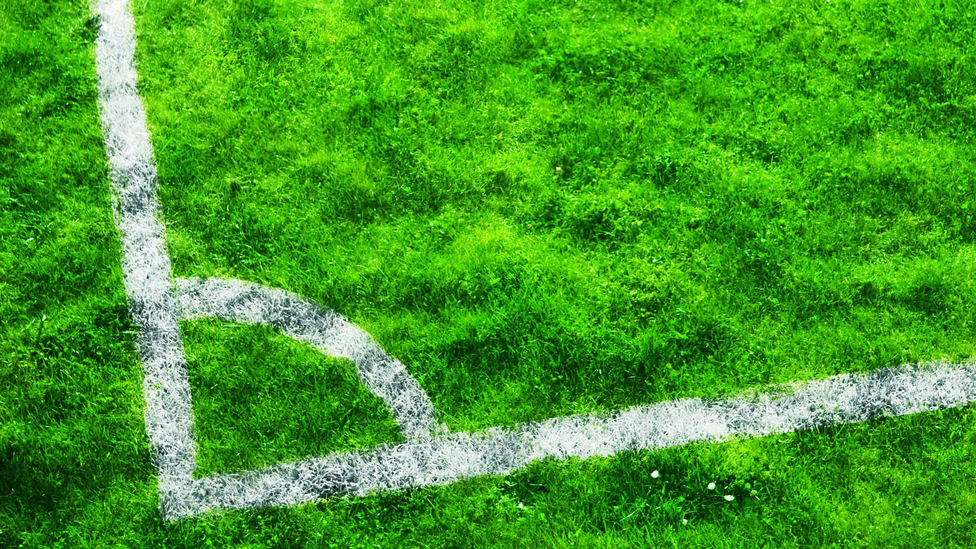 Обои угол футбольного поля для